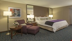 Wyndham Peachtree Hotel and Conference Center
