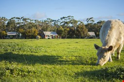 Freshwater Creek Cottages and Farm Stay