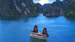 Viola Cruise Halong Bay