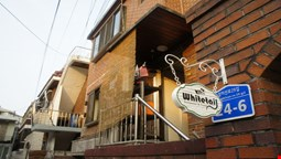 Whitetail Backpacker and Hostel - Hostel