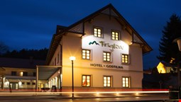 Hotel and guest house Triglav Dobrna