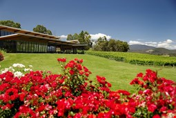 Balgownie Estate Vineyard & Spa