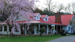Blue Ridge Manor Bed and Breakfast