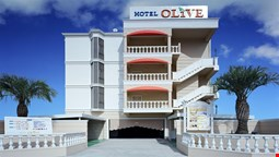 Hotel Olive Sakai - Adults Only